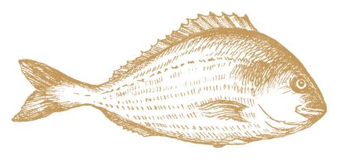 Les poissons du restaurant La Marée Monaco sont d'une fraîcheur inégalée